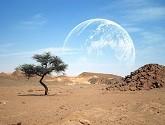 pustynya